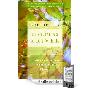 kindle edition of living as a river